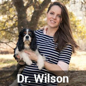 Dr.-Rachel-Wilson
