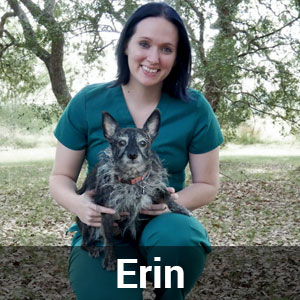 Erin-Office-Manager
